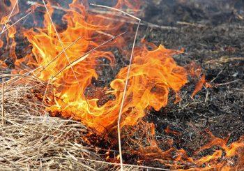 Порядок использования открытого огня и разведения костров на землях сельскохозяйственного назначения
